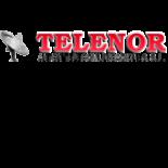 ANTON TELECOMUNICACIONES, S.L. – TELENOR